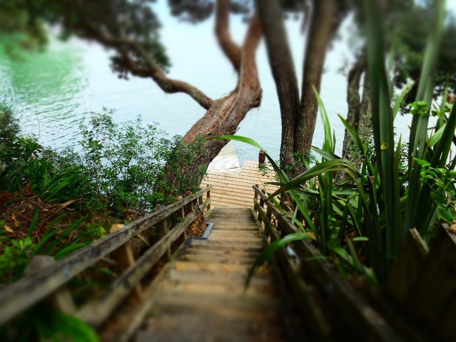 The Hidden Cove in North Shore